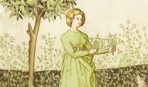 Herbolata de maio del M.Martino (XIV sec)